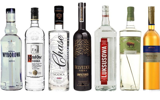Best Popular Vodka Drinks