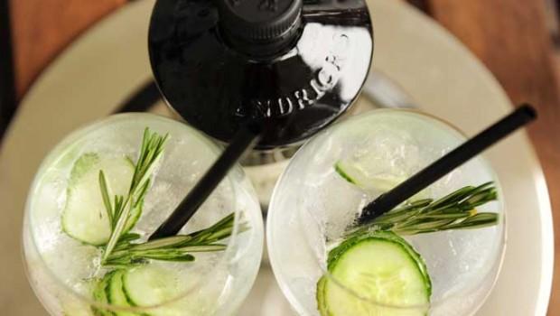 Top 5 lekkerste Gin Tonic recepten