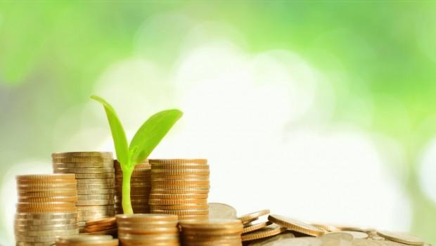 Top 5 groene en duurzame banken in Nederland